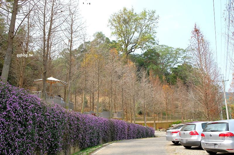 台中新社︱松之戀 The Pines.以落羽松為主題的玻璃屋景觀餐廳,環境優美適合放鬆心靈,新社景觀餐廳推薦 @QQ的懶骨頭
