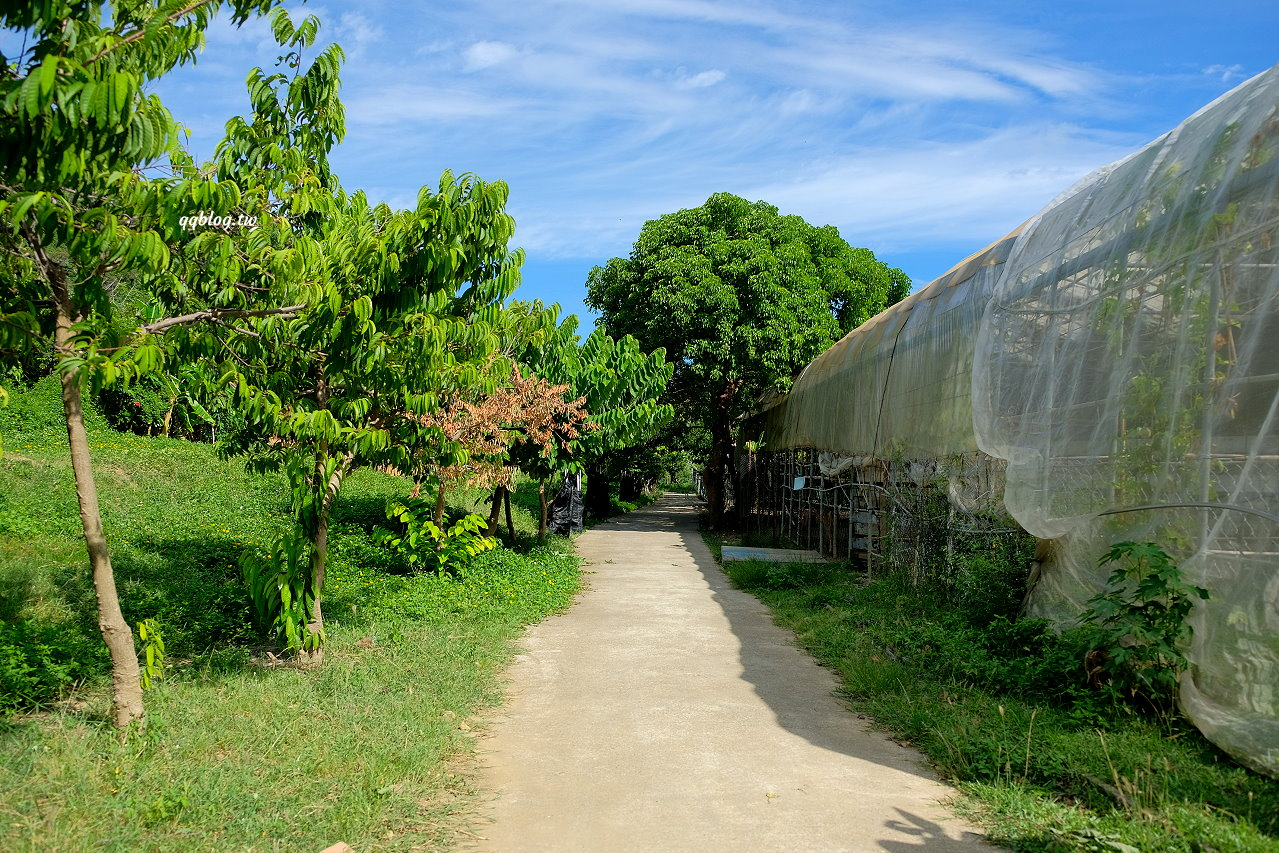 屏東恆春︱阿信巧克力農場.認識可可豆的原貌,還可以餵梅花鹿和兔子 @QQ的懶骨頭